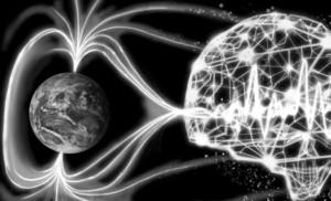 Вирусы генома человека в магнитном поле Земли