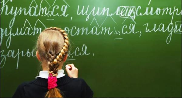Мишустин объявил о начале экспертизы правил русского языка