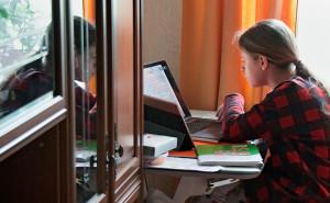 Лишь 16,8% опрошенных школьников довольны дистанционным обучением