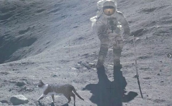 Почему НАСА прячет «лунный грунт» от всего мира?