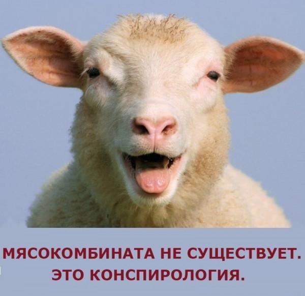 Обнаглевшая медицина России