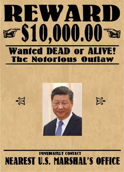 Wanted Ping Pong.png