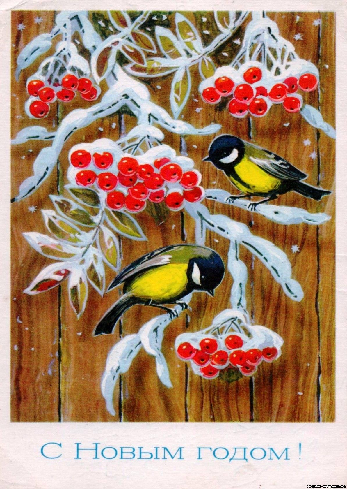 Советские открытки с птичками
