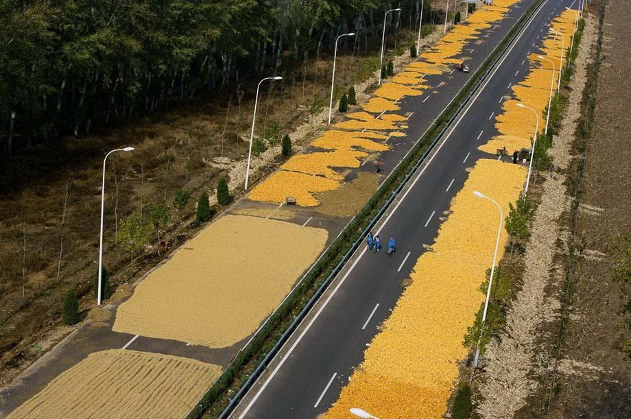 Китайцы сушат на трассе в