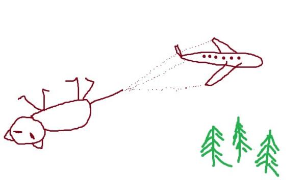Большой самолет везет маленькую Кысю далеко далеко