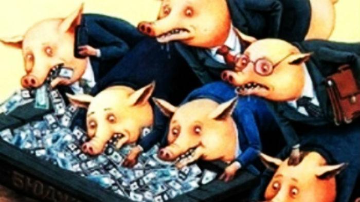 Свиньи+у+корыта