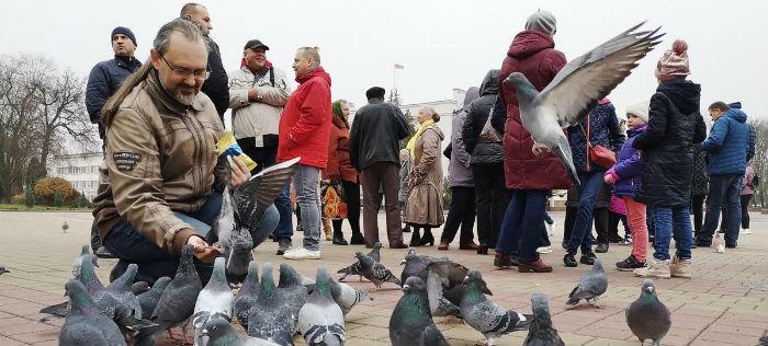 Напряжение. Екатеринбург покормил голубей