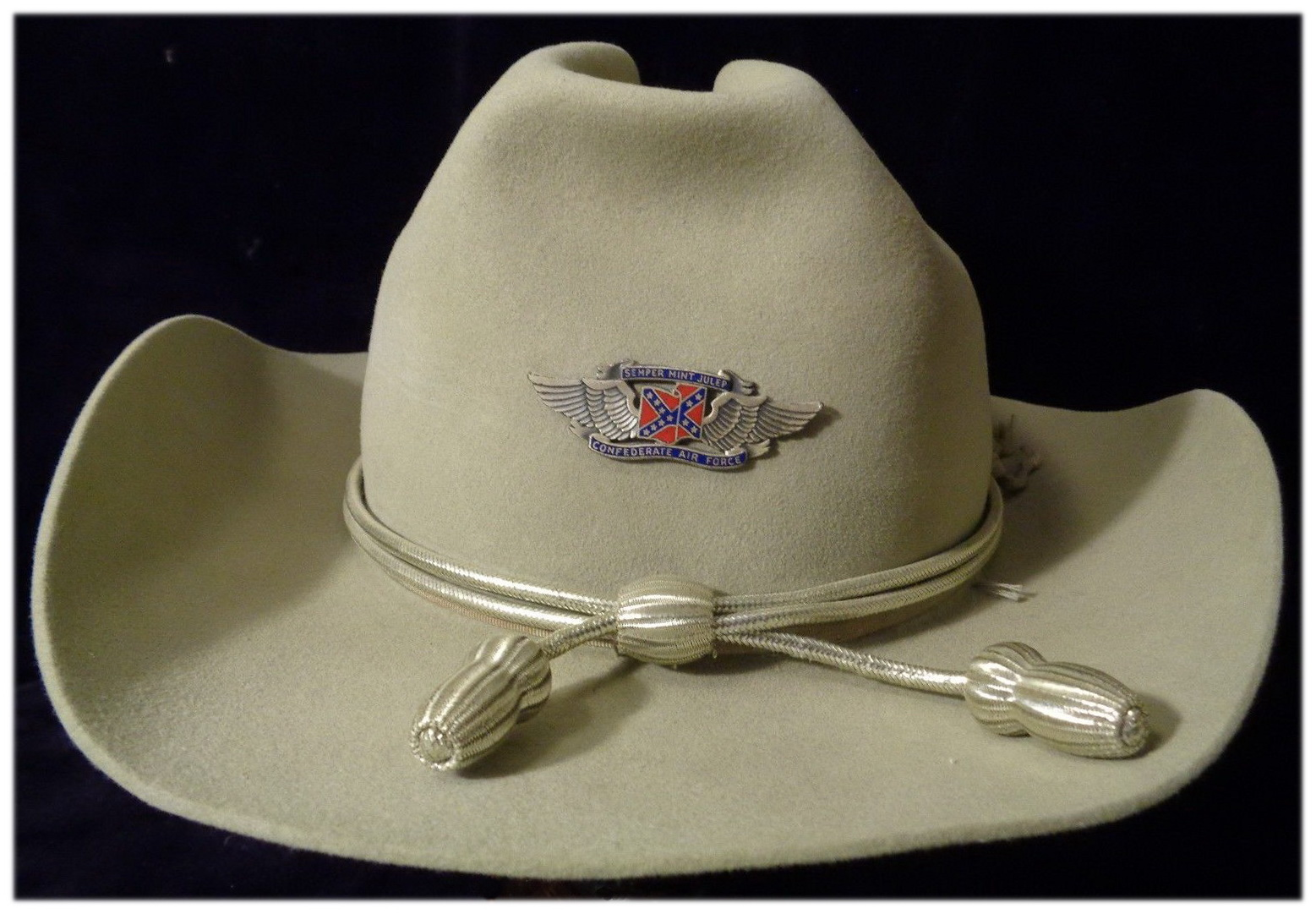Confederate Air Force Wings 1