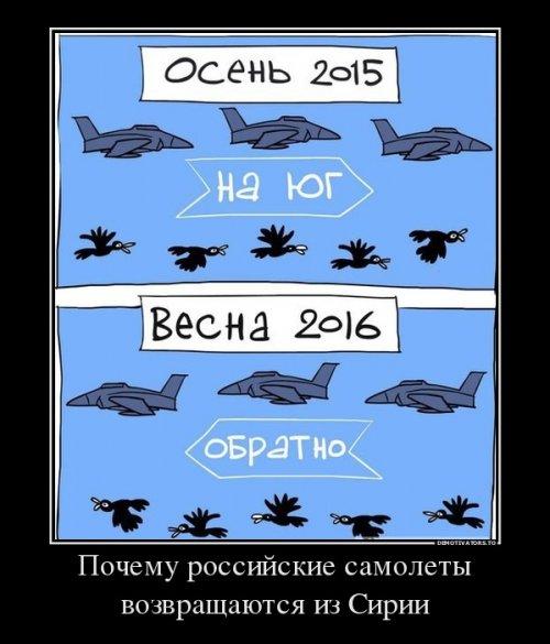 Партия наркотиков стоимостью более 10 млн грн задержана при попытке ввоза в Украину, - СБУ - Цензор.НЕТ 9049