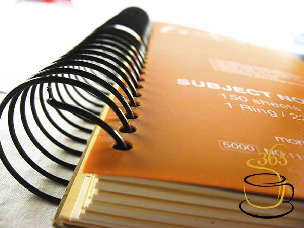 photo_11234_20090519