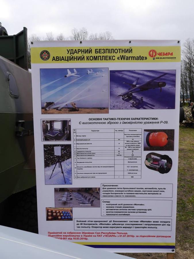 Решение о выдаче оружия сотрудникам спецмиссии ОБСЕ на Донбассе будет приниматься консенсусом, - Заньер - Цензор.НЕТ 2636