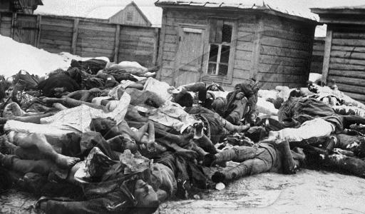 Тела рабочих и крестьян, расстрелянных колчаковцами