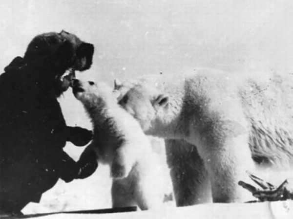 Дружба человека и белого медведя на снимках 1980-х