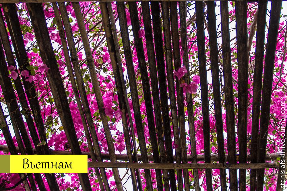 20130409_vietnam_031_cover