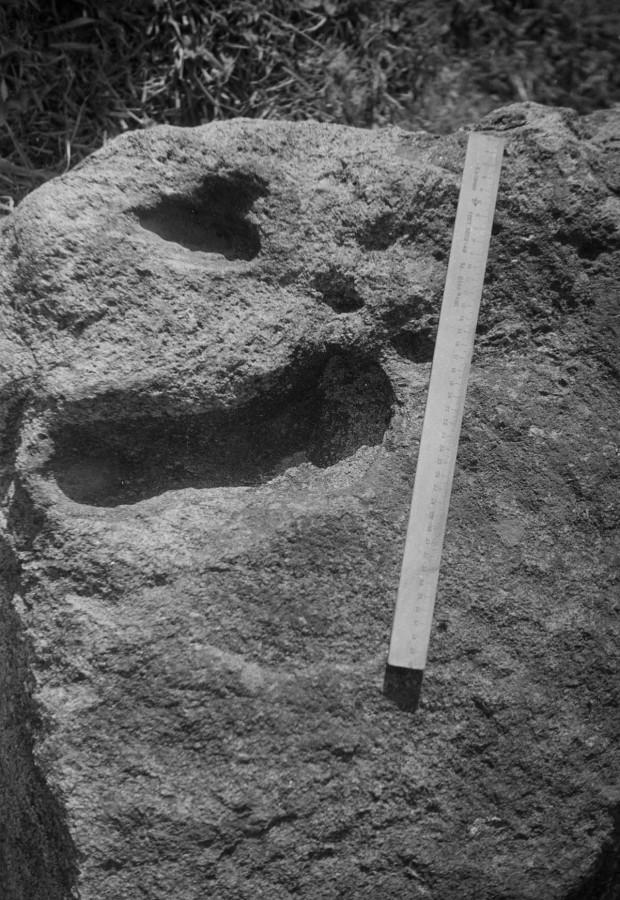 Камень-следовик в дер. Новосел. 1968г.jpg