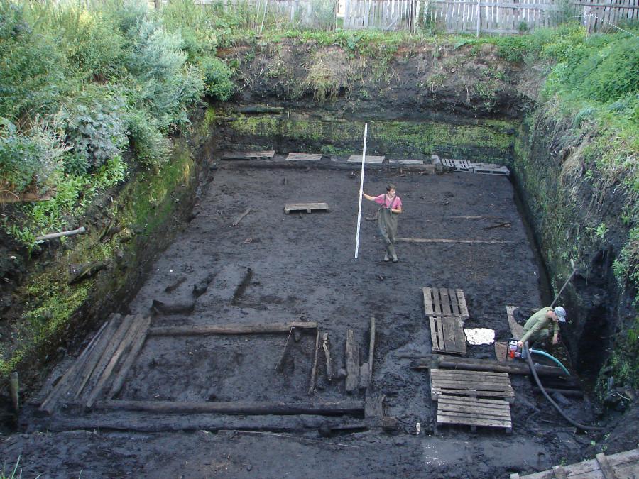 Пятницкий-I раскоп. 2009 год