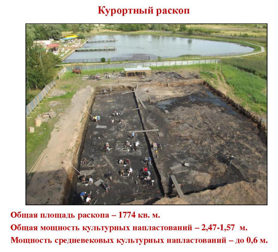 Общий вид раскопа