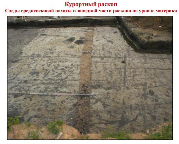 Следы средневековой пахоты в западной части раскопа на уровне материка