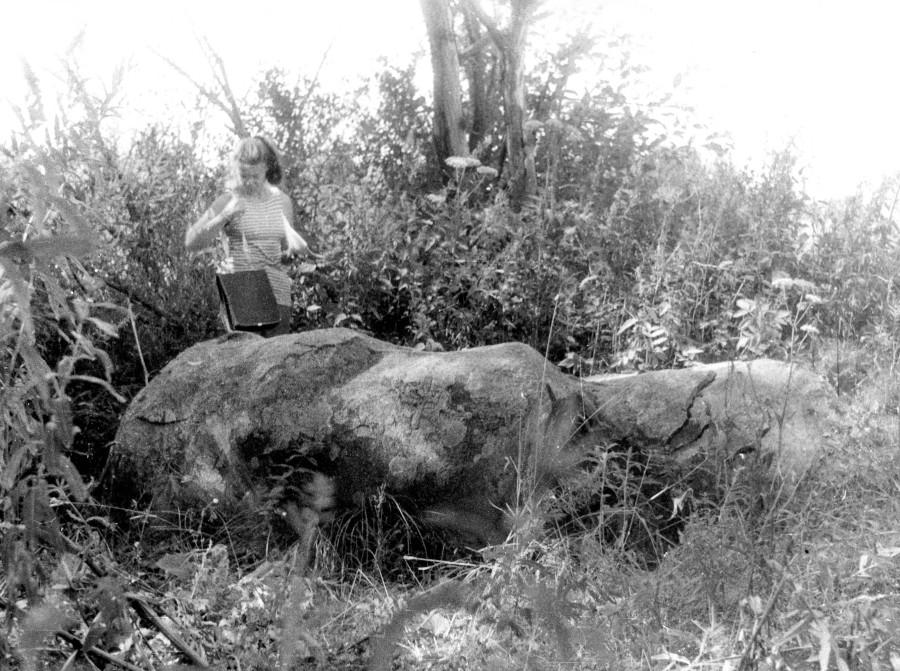 Поклонный камень у дер. Данилово.вид с востока1992г