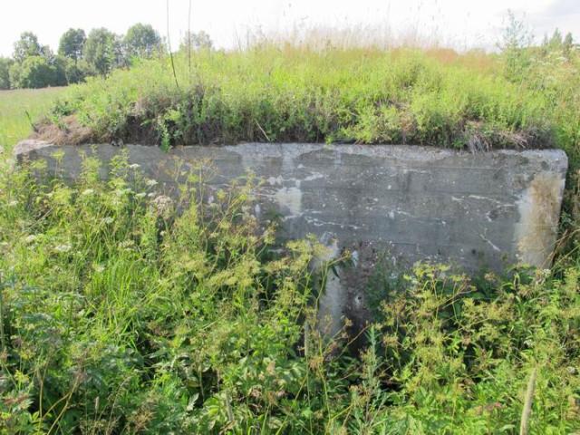 Ржевско-Вяземская линия обороны в районе Оленино