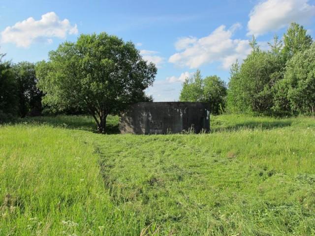 Псковский укрепрайон, ДОТ в Улкино