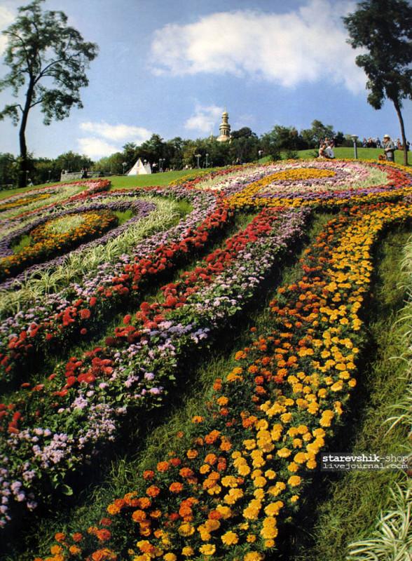 Выставка цветов 1983