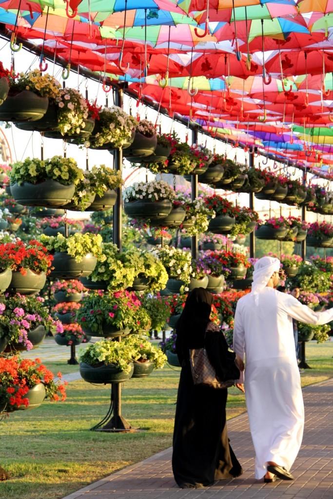 Цветы радость, доставка цветов оаэ организация праздниками