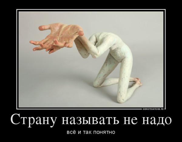 77431_stranu-nazyivat-ne-nado_demotivators_to