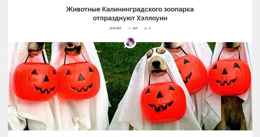 Хоопарк Хеллоуин