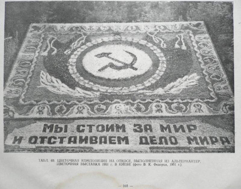 albom-parternoi-zeleni-1953_111