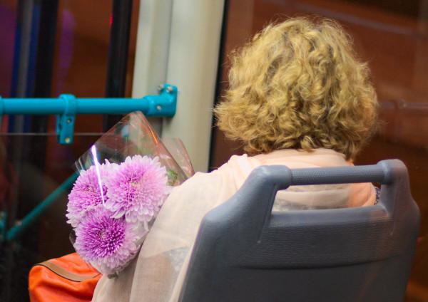 tram_flowers