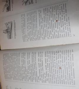 1_Тесто_рецепт из книги_2