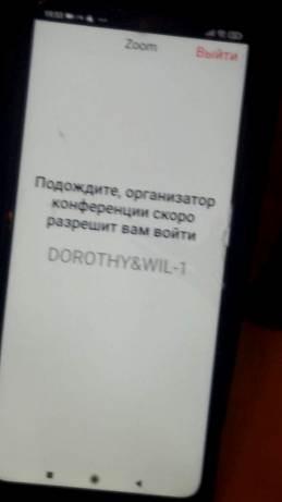 dorothy_zoom