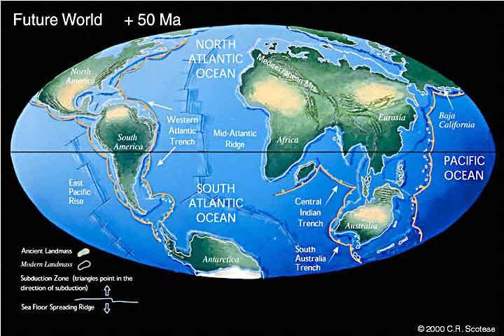 50 миллионов лет