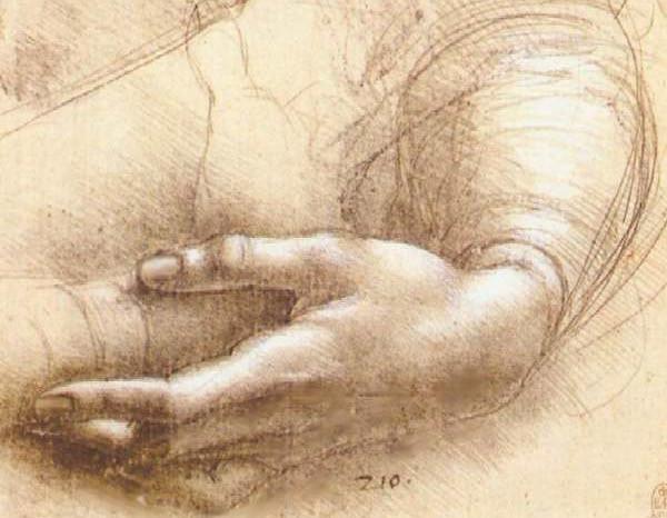 Почему у человека только пять пальцев на руках и ногах?
