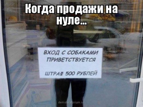 1457694271_fotomemy-9