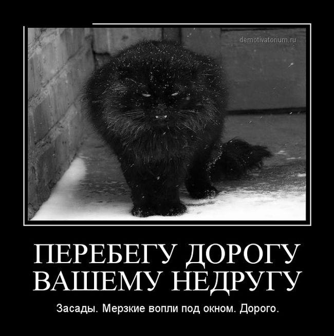 1417390608_demotivatory_08