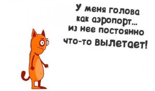 1436769757_anekdoty