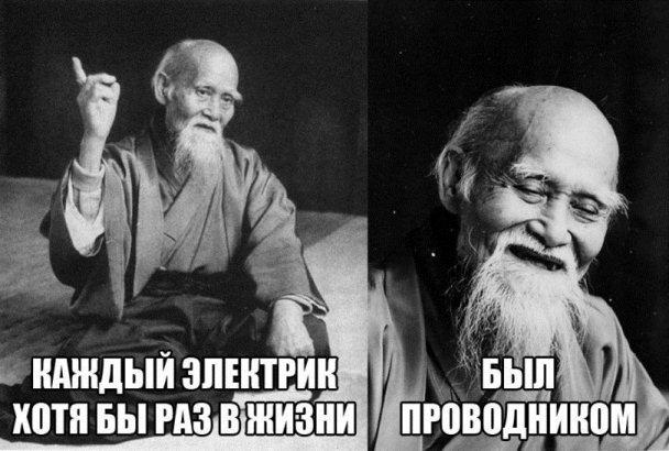мудрость-логика-электричество-профессиональный-юмор-2449905