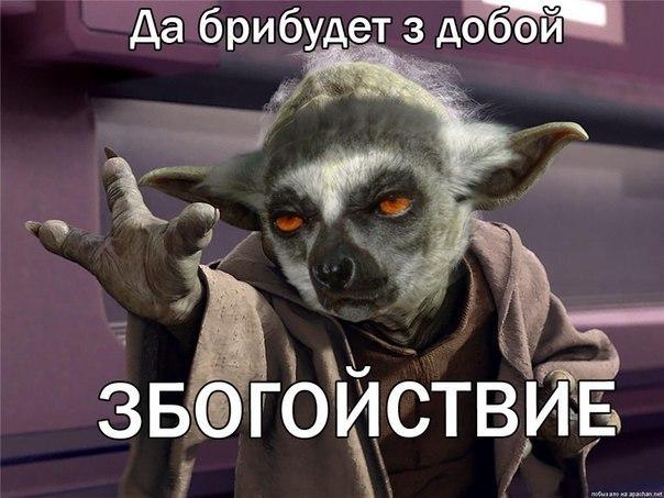 aNIU8atlCZU
