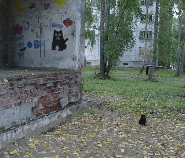 осень-котейка-2534303