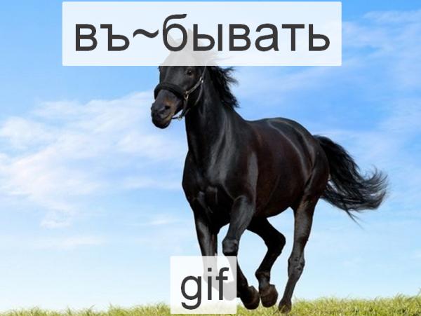 2015-01-03 02-56-50 лошать  1 тыс изображений найдено в Яндекс.Картинках – Yandex