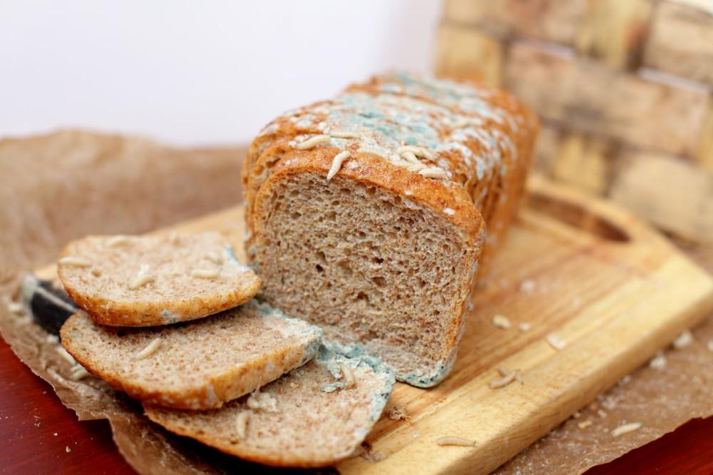 Немного про плесень на хлебе