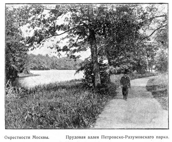 3-Petrov-Razum-1