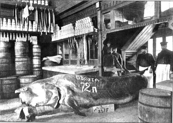 В магазине на Тверской в Москве до 1917