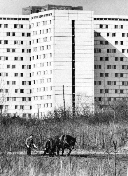 Москва-3