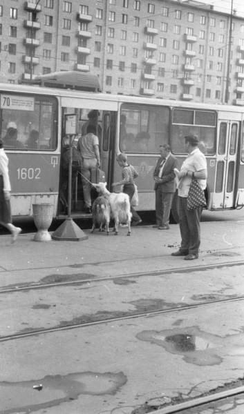 Уличная сцена в Москве_1980 год