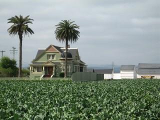 Salinas Valley