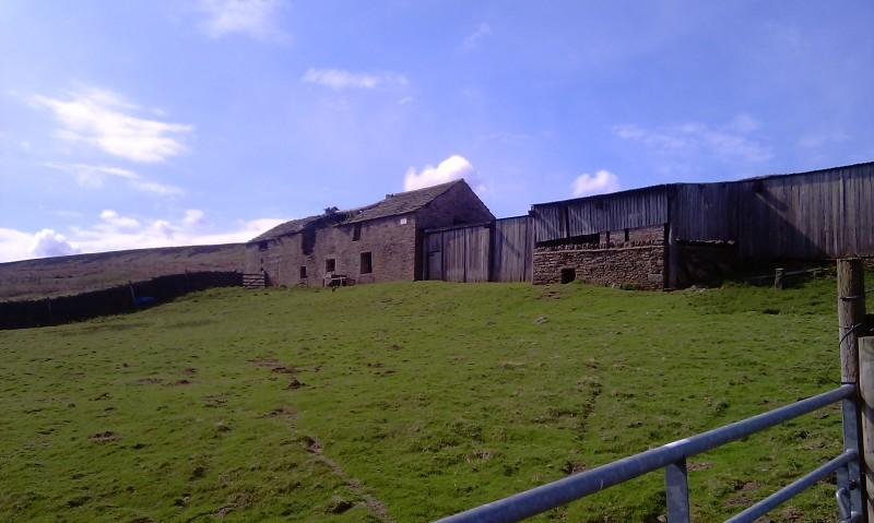 Rabbit Poo Farm 2010