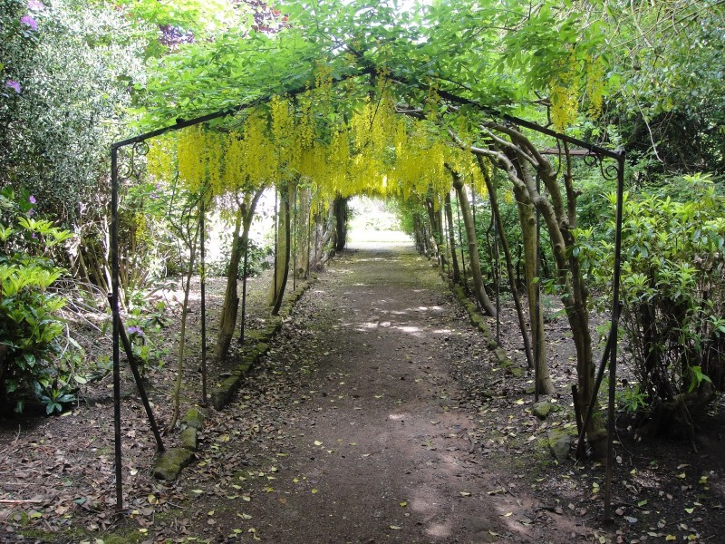 Pergola in yellow